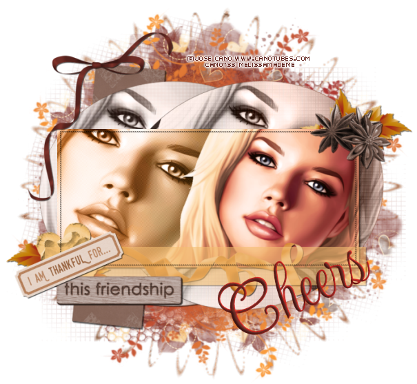 ♥NatCat♥Chat♥ *~Mail~* - Page 2 Cheers%20thankful%20for%20this%20friendship%20melissa_zpspswo20sm