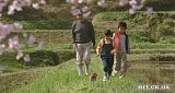 Mari to Koinu no Monogatari / История Мари и трёх щенков Th_MaritoKoinunoMonogatari3