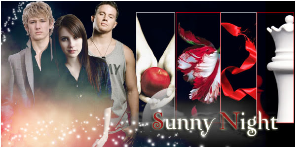 Sunny Night Rol Logo-2