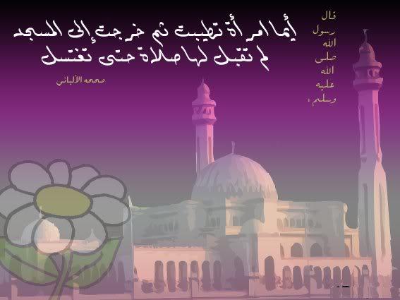 هذه الصور التى أعجبتنى للمراة المسلمة 10-1
