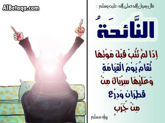 هذه الصور التى أعجبتنى للمراة المسلمة 13