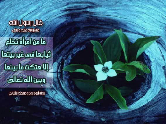 هذه الصور التى أعجبتنى للمراة المسلمة 6-1