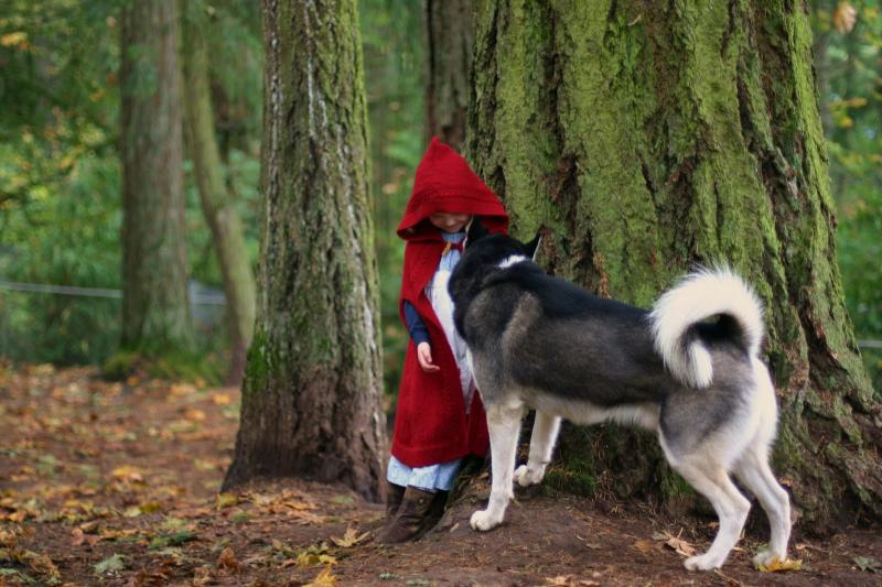 """My girls as Little Red Riding Hood, each with a """"wolf!"""" Handmade costume handed down. 5142343091_41fd90a8cb_o"""