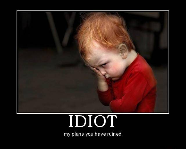 Funny Pictures - Page 4 Idiot-idiot-demotivational-poster-1228432978