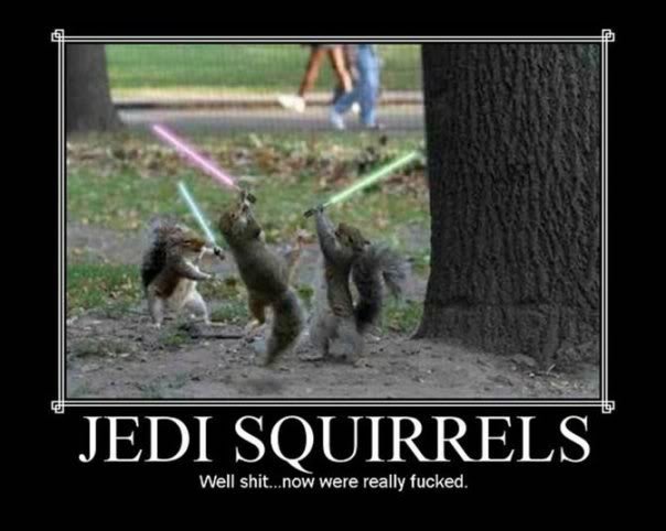Funny Pictures - Page 4 Jedisquirrels