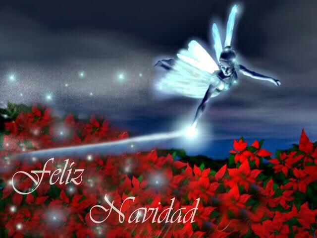 FELIZ NAVIDAD 2009 - 2010 Nacimiento-feliz-navidad2