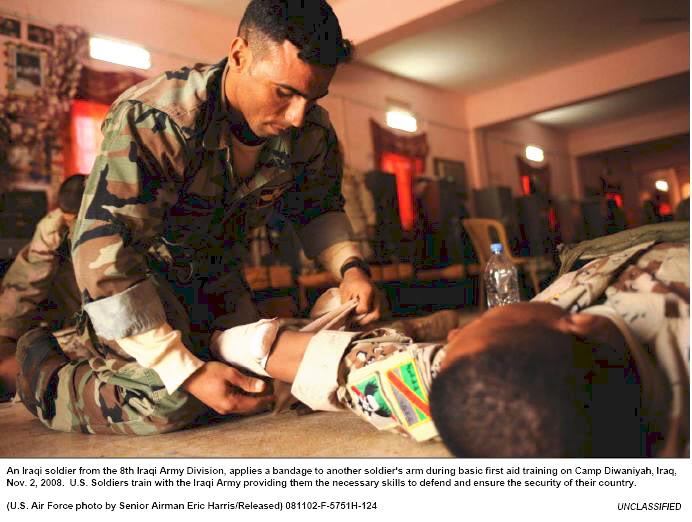 Post Hussein Iraq army insignia 8IA_badging2
