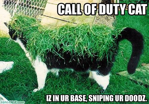 Funny Things Cod-cat