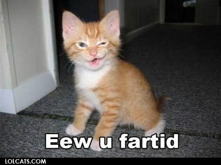 又可愛又爆笑的貓貓圖 Lolcatsdotcomfdb7lvxfbzpbni68