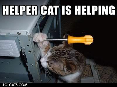 又可愛又爆笑的貓貓圖 Lolcatsdotcomlzhksdvmkt1i1t2y