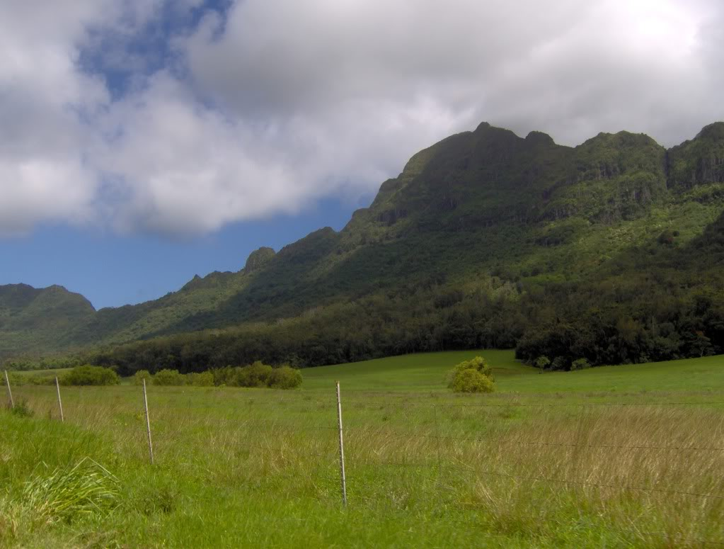 Jurassic Park Franchise Filming Locations!  HPIM0357