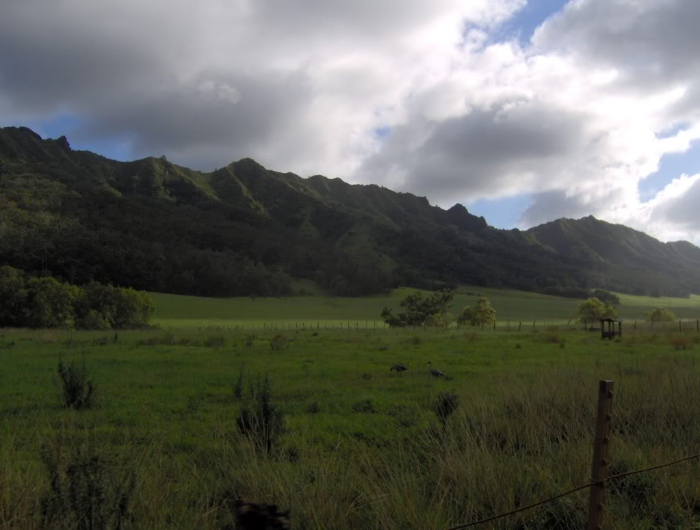 Jurassic Park Franchise Filming Locations!  HPIM0418