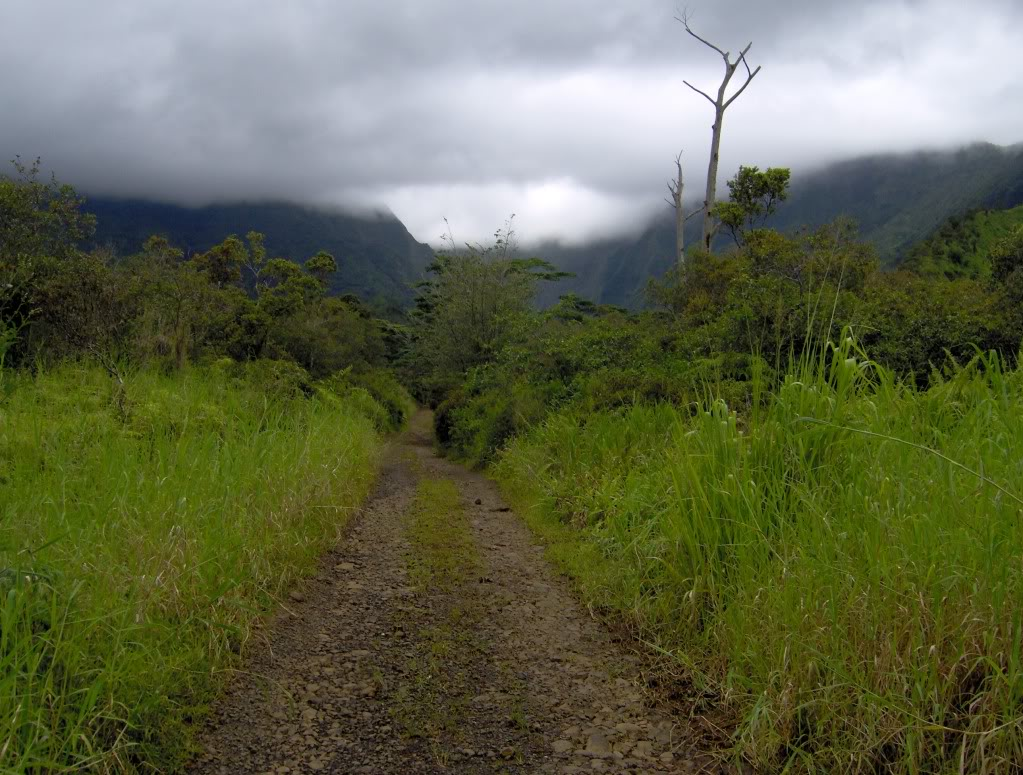 Jurassic Park Franchise Filming Locations!  HPIM1232-1