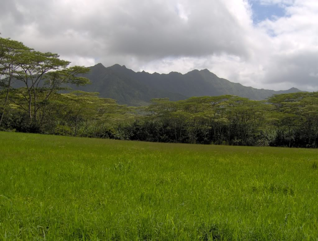 Jurassic Park Franchise Filming Locations!  HPIM1352