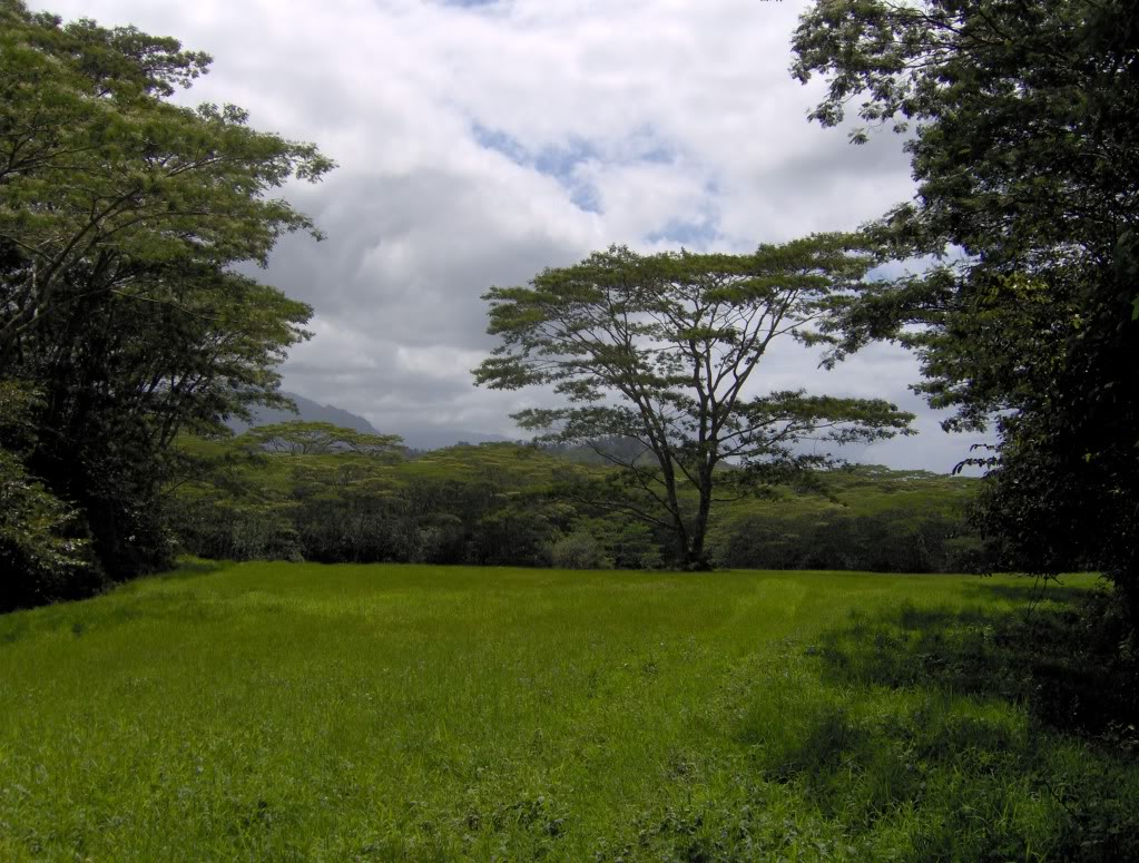 Jurassic Park Franchise Filming Locations!  HPIM1354