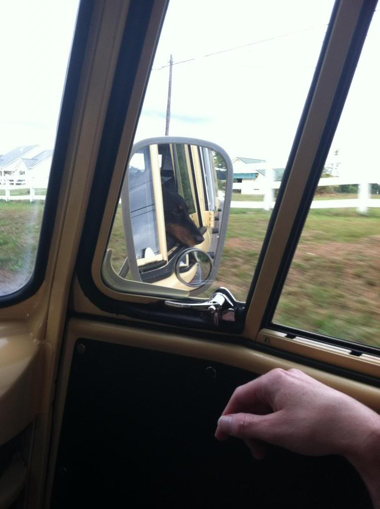 """66 Camper Bus """"Bocephus"""" - Page 10 IMG_0734_zpsaa9f0437"""