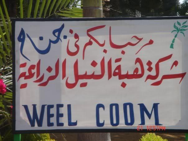 يبقى انت اكيد فى مصر 2 Image138