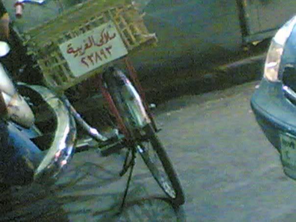 يبقى انت اكيد فى مصر 2 Image143
