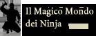 GDR Naruto - Il magico mondo dei ninja