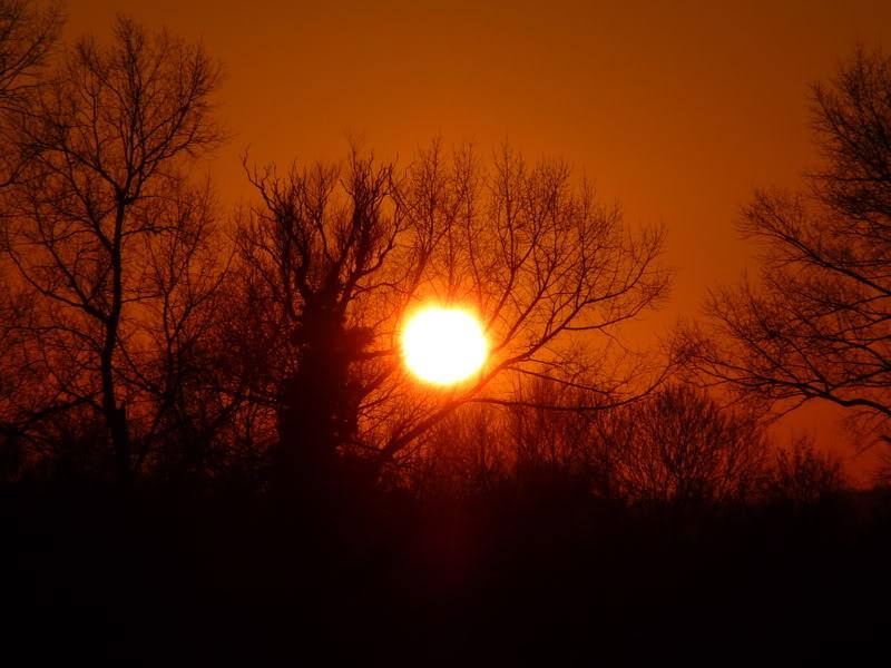 Pretty Sunset in the Chiltern Hills, Buckinghamshire UK P1000262