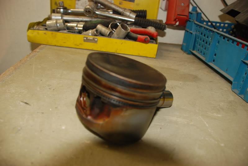 Latvian pinto turbo DSC_0057