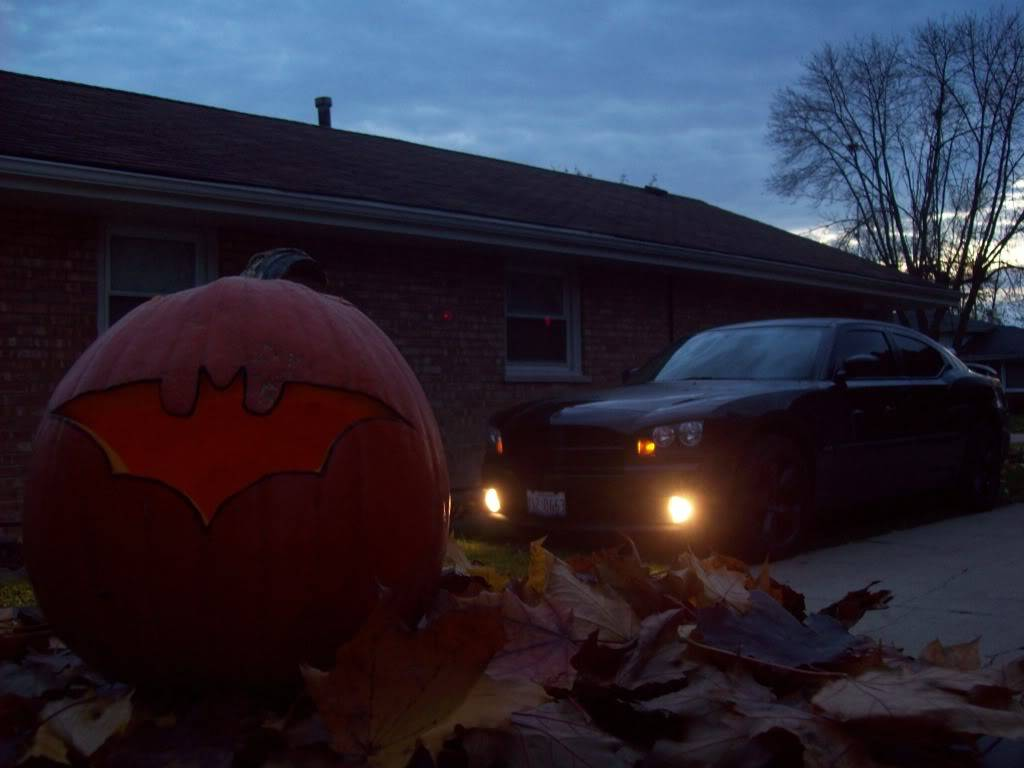 Cool Pic!!! This was my entry for October's photo contest on CF! 100_2225