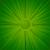 Ocho Colores Green