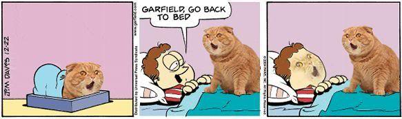 Garb Initiative 2.0, or Trolololol - Page 7 Garfield