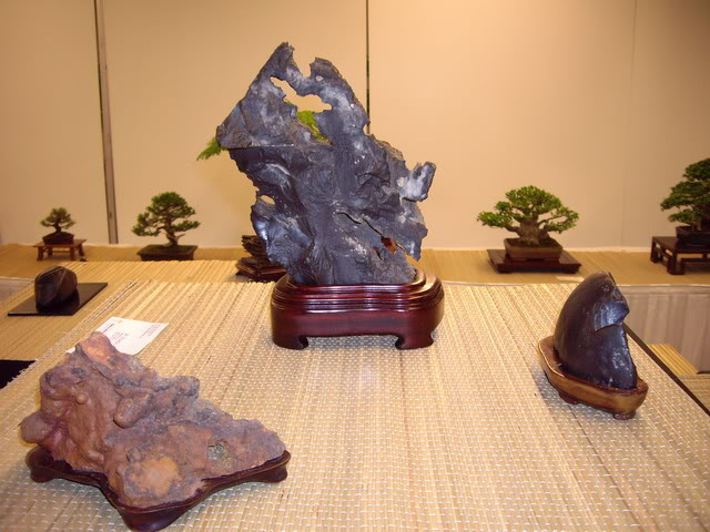 Photos of 6th World Bonsai Convention in PR IMGP6212_resize