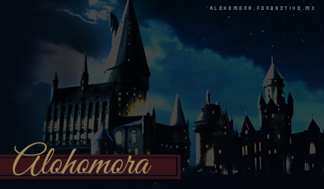Alohomora - Normal Banner_1
