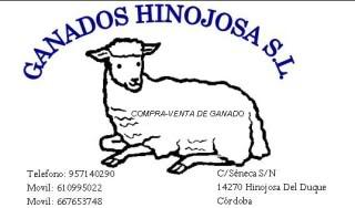 hinojosaenduro Publicopia-1