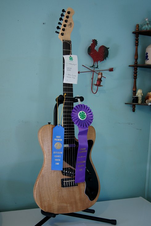 I made my own guitar for a 4-H Fair project! Dsc08417_zps27187f9f