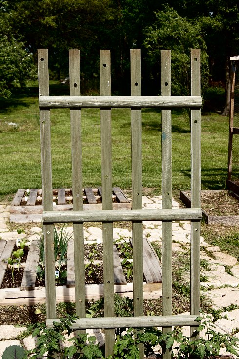 What would you say if I told you how to make a raised  bed garden at $0.00 cost Dsc07676_zpsbdc1efe6