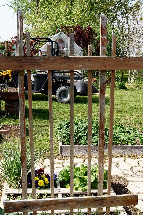 What would you say if I told you how to make a raised  bed garden at $0.00 cost Dsc07678_zps20194cc1