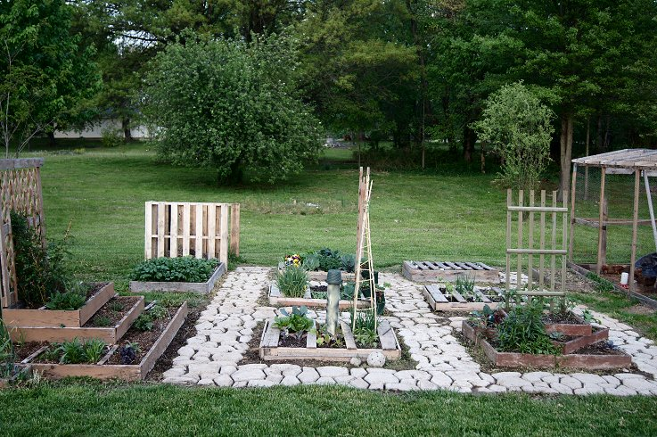 What would you say if I told you how to make a raised  bed garden at $0.00 cost Dsc07686_zpsb02b415d