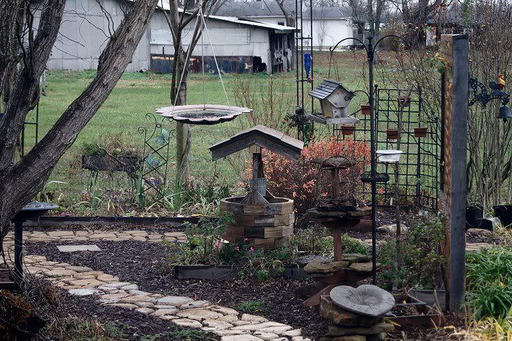 Josh's Project Bird Feeder Watch Birdwatch