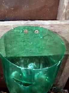 self water soda bottle planters Soda2