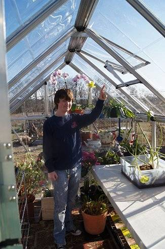New for 2012...a small greenhouse 5-1