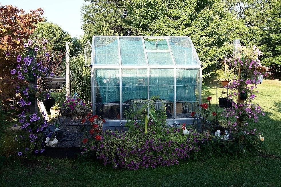 self water soda bottle planters 6-13-12sodabottle