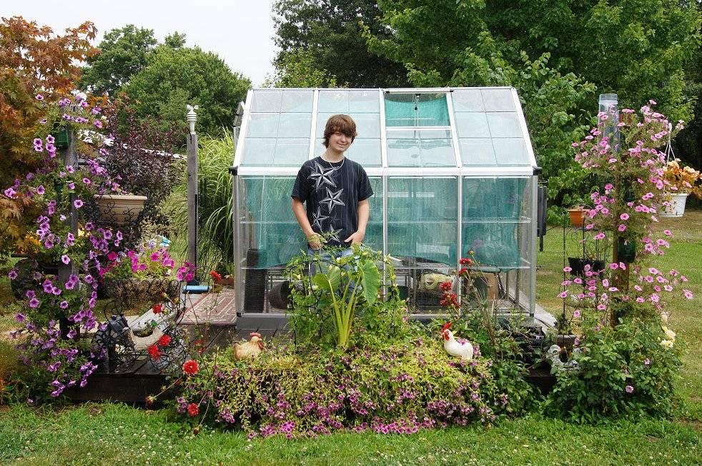 self water soda bottle planters 6-24-12flowers