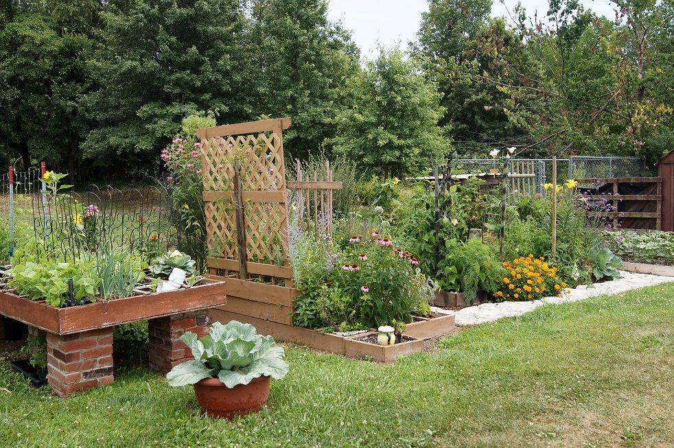 Rabbit manure, red wiggler worms & your garden 6-24-12sfg