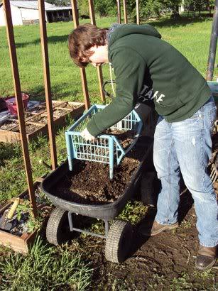 Rabbit manure, red wiggler worms & your garden Dsc00382