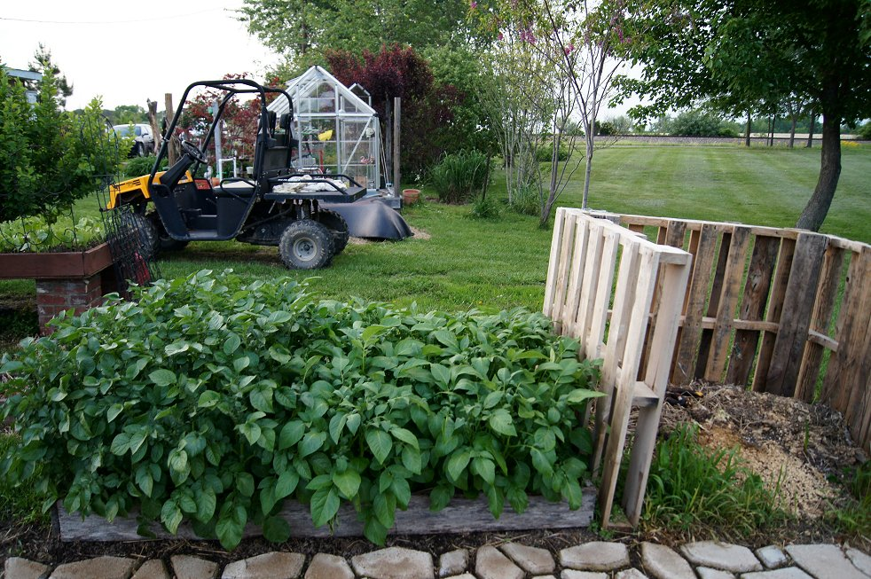 What would you say if I told you how to make a raised  bed garden at $0.00 cost Dsc07798_zps2f50fb2c