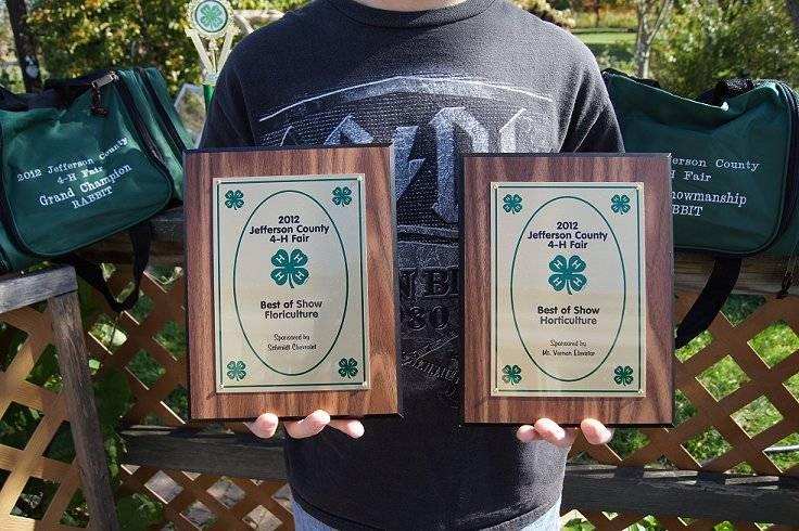 4-H Fair Award-1