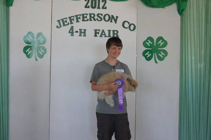 4H Fair Grandchampion