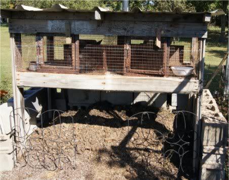 Rabbit manure, red wiggler worms & your garden Rabbitcompostpile