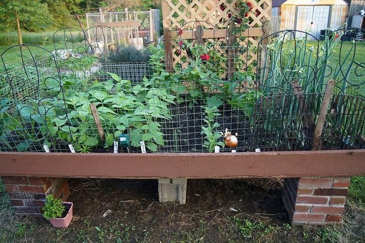 June 2nd-Raised Vegetable Garden 6-2-13tt_zpsbd51bae2