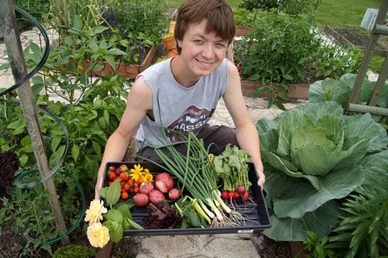 First harvest 6-9-13harvest_zps3a44355f