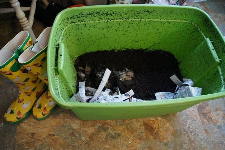 Making a cheap worm bin Worms1_zps34cb1b5f