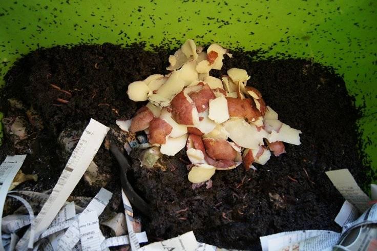 Making a cheap worm bin Worms4_zps268cbc3b